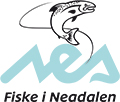 Logo: fiske i neadalen